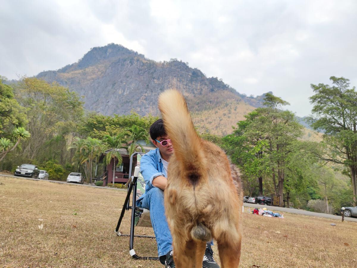 โซเชียลชอบใจ หนุ่มไปเที่ยวอยากได้ภาพวิวสวยๆ สุดท้ายเจอน้องหมาแย่งซีน
