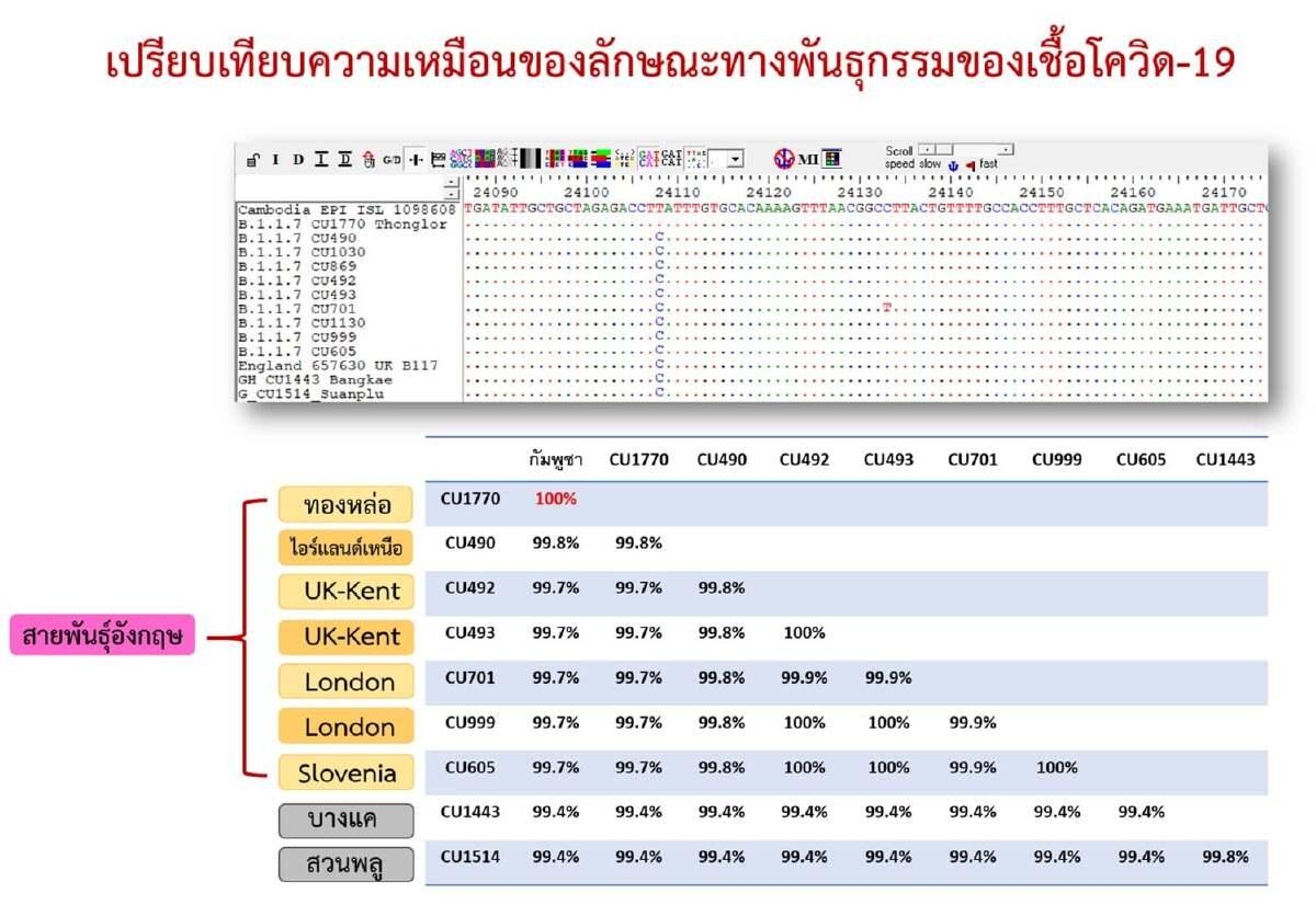 """""""หมอยง""""เผย โควิด-19 สายพันธุ์อังกฤษในไทย เหมือนที่พบในกัมพูชา"""