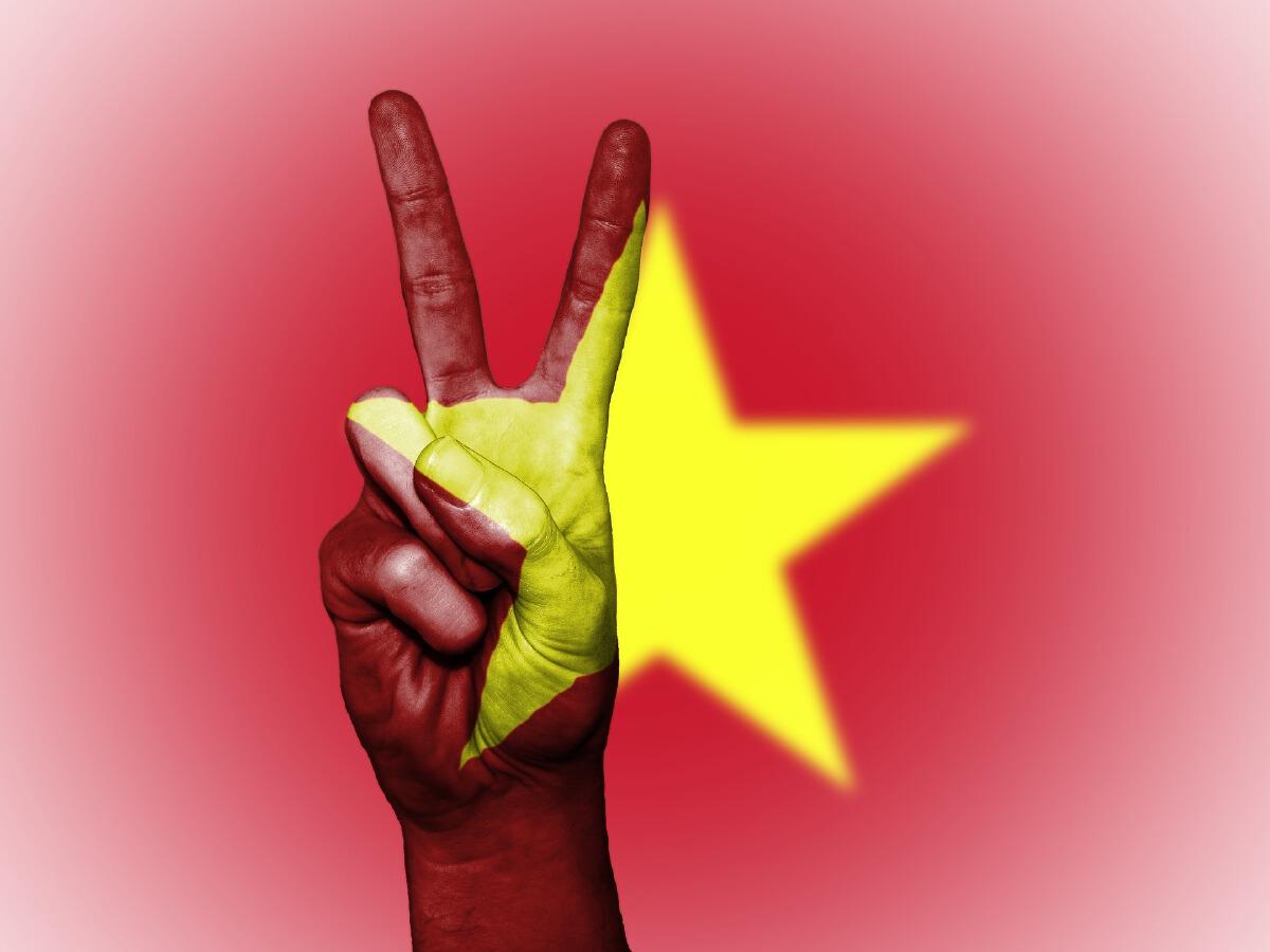 Vietnamfight