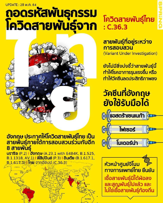 info thaicovid