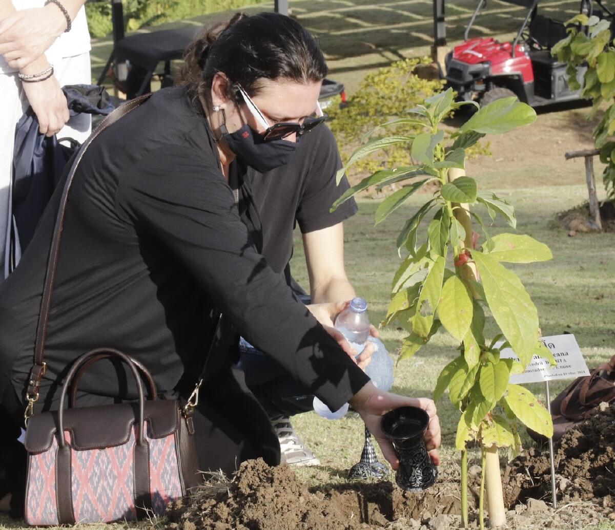 ครอบครัวฑูตยูเครน นำเถ้ากระดูก มาไว้กับต้นอโวคาโด โครงการปลูกป่าสวนนงนุช