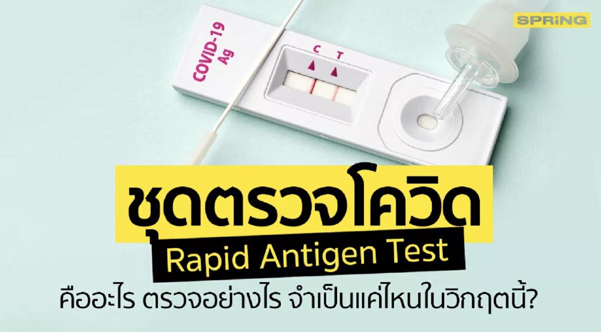 ชุดตรวจ rapid test