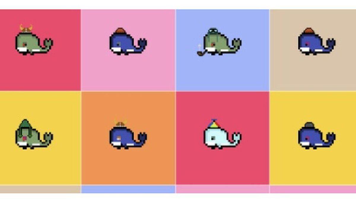 Weird Whales
