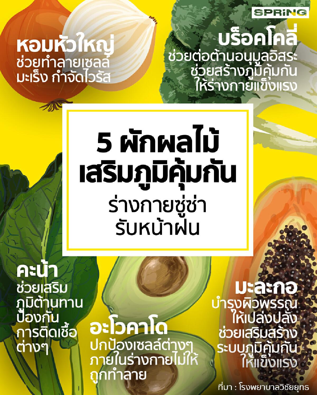5 อาหารต้านไวรัส เสริมสร้างภูมิคุ้มกัน ซูซ่ารับหน้าฝน