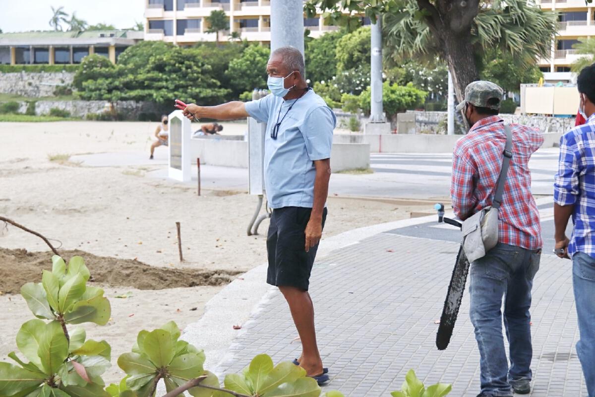 """""""ปรับโฉมใหม่ ชายหาดพัทยา"""" โดยสวนนงนุชพัทยา"""