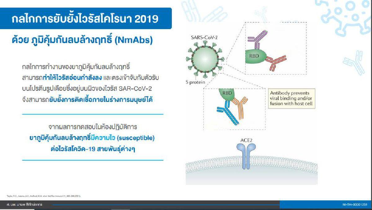 กลไกการยังยั้งไวรัสโคโรนา 2019