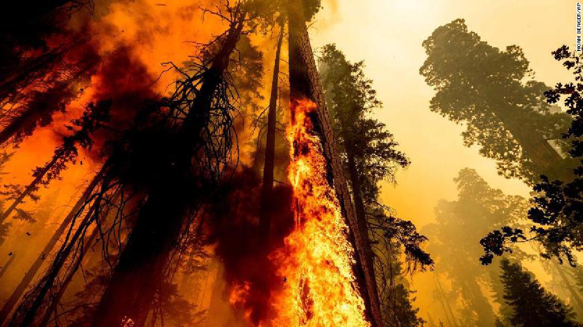 Climate Change ไฟป่า