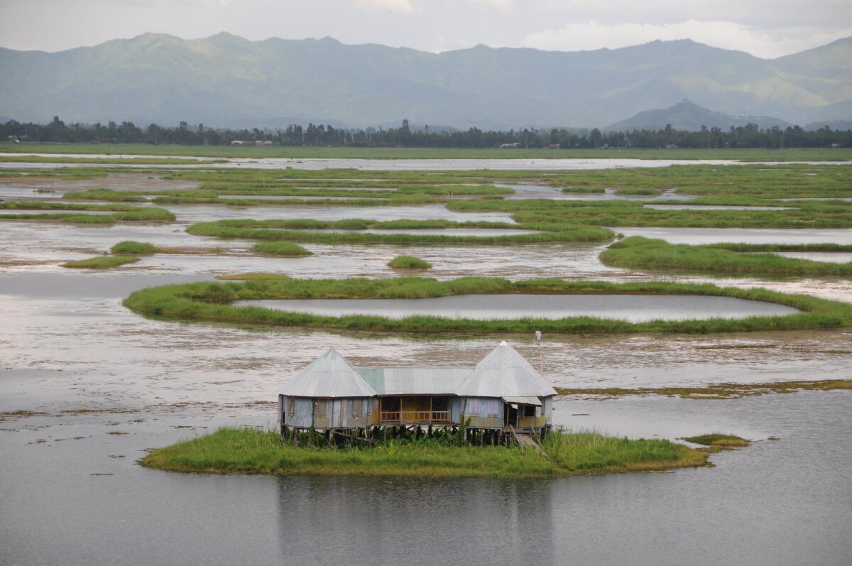 ทะเลสาบลอกตัก (Loktak Lake)