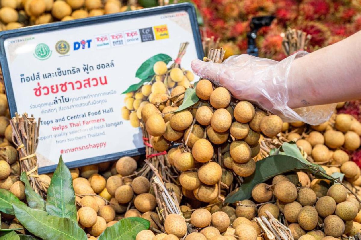 เซ็นทรัล สนับสนุนการเกษตร